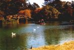 Stow Lake im Golden Gate Park