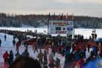 Restart des Iditarods in Willow